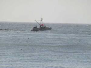 BigRiver-Fishing-Boat