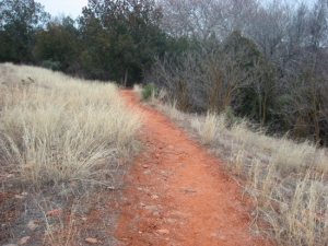 a reddish brown path for blog