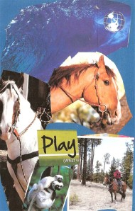 play by shay 2014 January copy