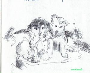 cute little pups