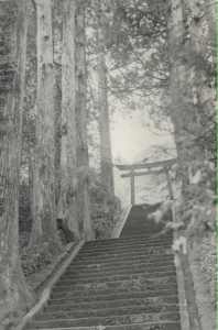 the stairs in japan
