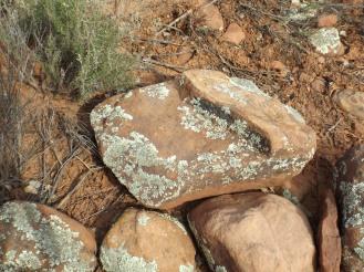 rocks in the earth